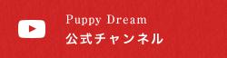 Puppy Dream 公式チャンネル